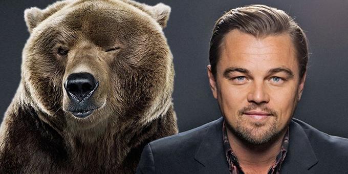 Leo Bear Site