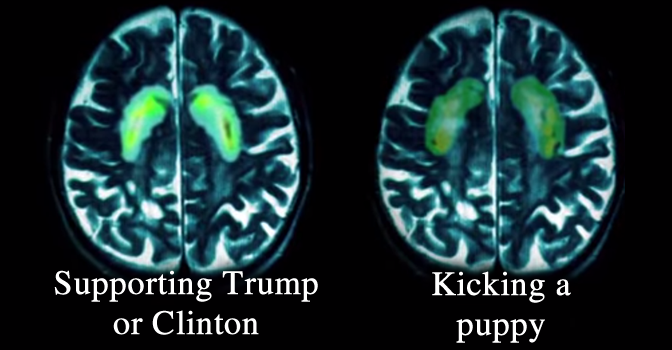 FMRI Clinton Trump